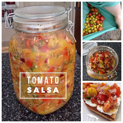 Tomato Salsa with Milk Kefir Whey
