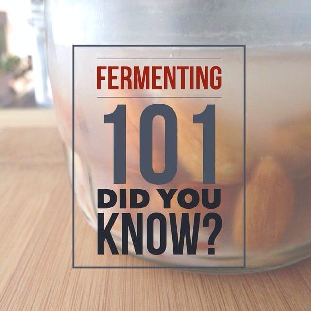 Fermenting Almonds Milk Kefir