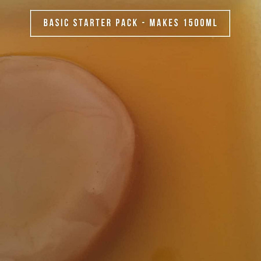 Organic Kombucha - Basic Starter Pack - 1.5L