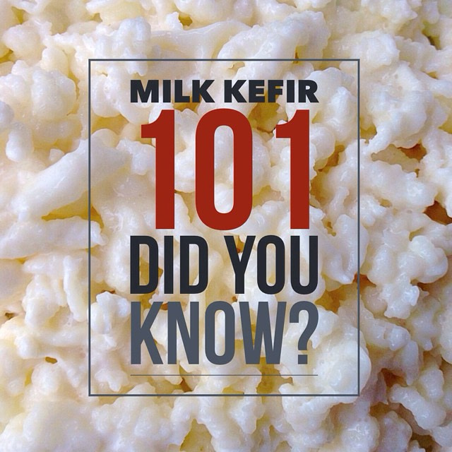 How to make consistent batches of milk kefir